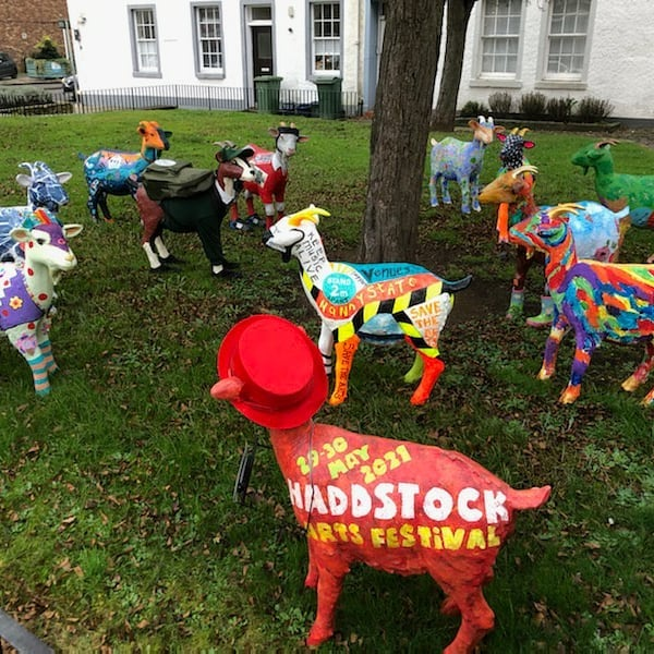 Trail of painted goat models outside, on grass